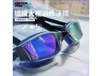 WATER PRO G13 Pulse Mirror Goggles